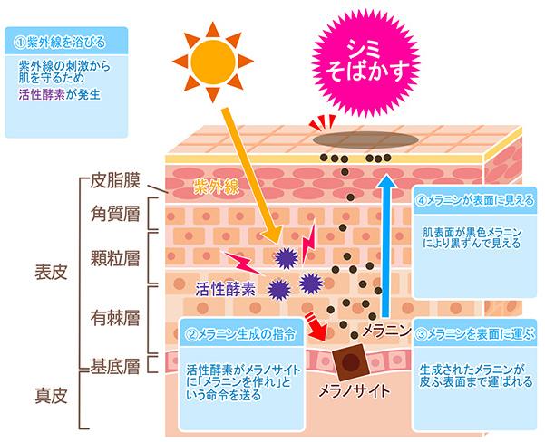 レーザー 大阪 そばかす シミ取りレーザーするなら大阪で!安いと人気のおすすめ皮膚科&美容クリニック15選 【OSAKA】大阪ええとこ案内