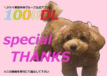 1000DL